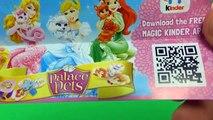 3 Kinder Surprise Eggs from the Frozen 3 Kinder Surprise Eggs and Disney Princess SE&TU