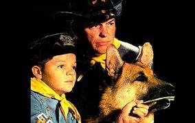 Las aventuras de Rin Tin Tin CAP 4