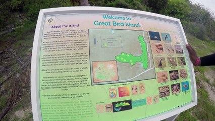 Antigua's Bird Island