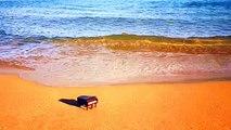 sad Piano Violin music that make you cry | Beautiful