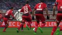 All Goals & Highlights HD - Dijon 1-1 Monaco - 29.11.2016