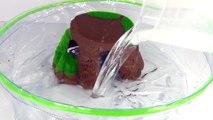 ROBO TURTLE ROCK & BOWL PLAYSET Robotic Pet Toy Review part2