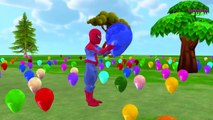 Spiderman Balloons for Children   Colors for Kids to Learn with Balloons   Spiderman Fun Balloons