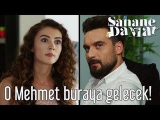 Şahane Damat - O Mehmet Buraya Gelecek!
