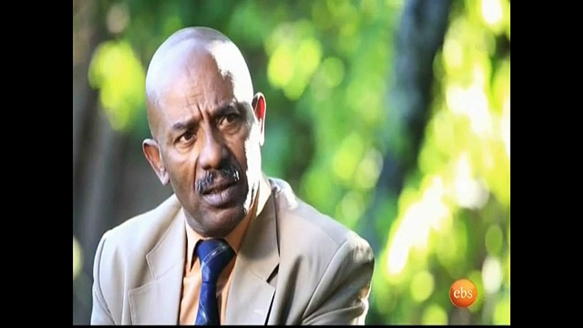 Walfan part 57 Ethiopian Drama By EBS
