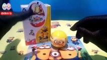 Uova sorpresa Minions | Ovetti di Minions in Italiano, video di uova kinder sorpresa Minions.