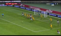 Federico Di Francesco Goal HD - Bologna 1-0 Verona - 01.12.2016