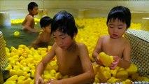 Japanese bath house adds 1000 rubber ducks for children