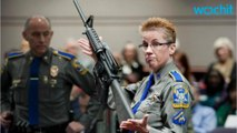Sandy Hook Gun Appeal To Be Heard By Top Connecticut Court