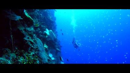 Christmas Island - Explore the Ocean