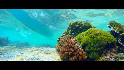 Christmas Island - Live the Adventure