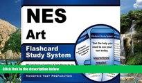 Online NES Exam Secrets Test Prep Team NES Art Flashcard Study System: NES Test Practice
