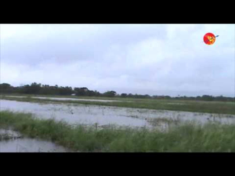 Flood in the Pegu Rice Fields