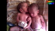 Best of Twin Babies Part 2 - Twins Happiness Baby - Funny Twins Baby Compilation 2016