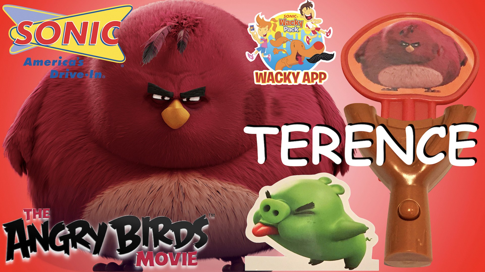 2016 PPAP Sonic The Angry Birds Movie Terence Unbox Wacky Pack Toy #6