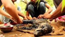 Des bénévoles croisent un chien totalement couvert de goudron chaud, ce qu'ils font est touchant !