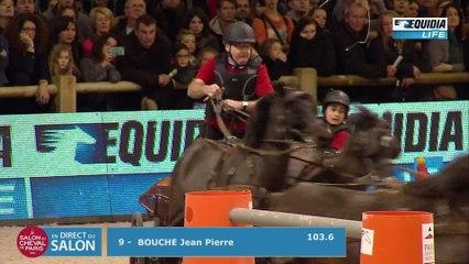 Salon du cheval 2016 Attelage pro elite 04/12/16