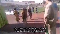 Quand un chameau s'invite aux entraînements de la JSK