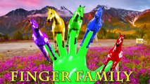 3D Horse Colours Songs Collection, Learning Colours For Children Nursery Rhymes Finger Family Songs