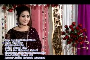Pashto New HD Song 2017 Wafa Khan - Loge Loge De Da Rukhsara