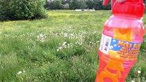 Riesen Seifenblasen Mega Bubbles - Auf der Wiese mit Nina und Kathi | Seifenblasen Demo