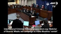 'Butcher of Bosnia' Mladic led campaign to make Muslims 'vanish'