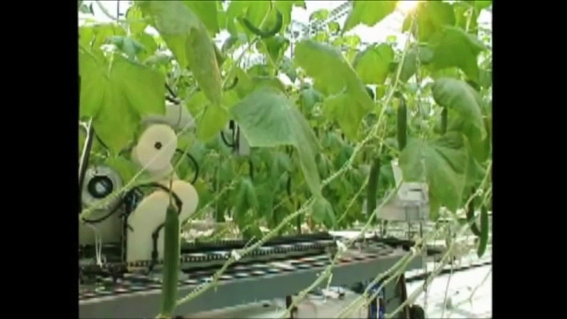 Machinery of latest technology, innovation in agriculture 1