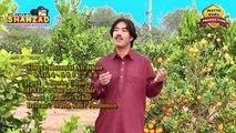 karamatdd - Singer Karamat Ali Khan Phone no 0344 6852786 dailymotion Mianwali