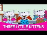 Three Little Kittens Lost Their Mittens Nursery Rhyme   Full English Animated Songs for Children