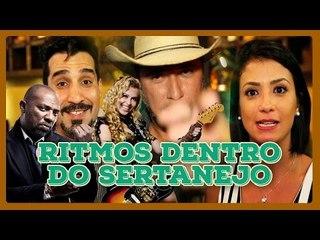 OUTROS RITMOS DENTRO DO SERTANEJO
