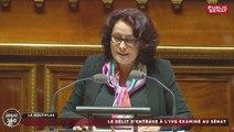 """IVG - """"La liberté de s'opposer à l'IVG ne doit pas entraver la liberté d'y recourir"""" : Stéphanie Riocreux"""