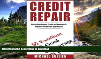 PDF Credit Repair: How to Repair Your Credit and Remove all Negative Items from Your Credit Report