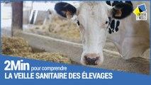 2 minutes pour comprendre le Département et la veille sanitaire des élevages