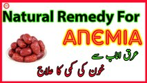 Natural Remedy for Anemia | Benefits and Miracles of Arq e Unnab | Jujube Fruit | Red Dates | Chinese Dates | Indian Dates |