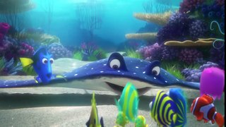 Finding Dory Funny Dory Moments