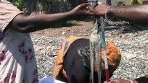 Pour une pêche durable du poulpe à Mayotte - Shimaore