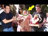 Salman Khan's Sister Arpita Khan's CUTE Son Aahil At Ganpati Visarjan 2016