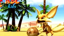 Oscar's Oasis - Best Cartoon Short Films - Funny Animal Videos 1080p ll HD] 2