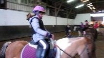 Leçon d'équitation galop avec Mustang