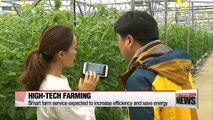 Korea tests smart farm service to increase efficiency and save energy