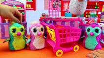 Hatchimals Baby BIRTH AT GROCERY STORE Magical Surprise Egg Draggle Doctor Turns Store into Hosptial