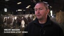 Réduire l'utilisation des antibiotiques vétérinaires