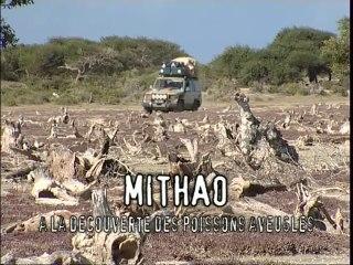 Latitude Malgache - Mitaho. Découvertes sous-marines - Madagascar