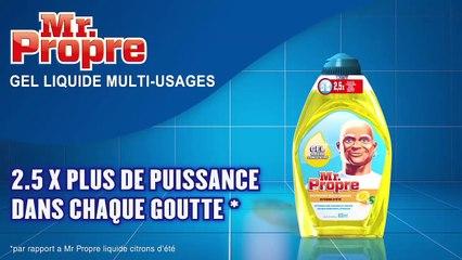 Mr. Propre -- Gel Liquide -- Petit mais puissant