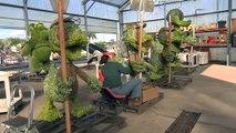 Behind the Scenes  Epcot International Flower & Garden Topiaries   Walt Disney World
