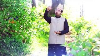 Awaien RalDay Nay Loki Teray Nal Sohneya by Sahebzada Owais Sabri