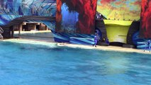 One Ocean (Full Show) SeaWorld San Diego 9 20 14