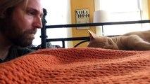 Réveillé par son chat tous les matins, son maître décide de prendre sa revanche!