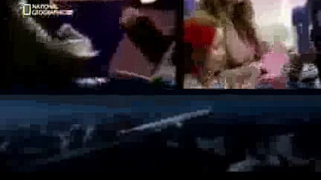 Air Crash Investigation Disaster Crash of The Concorde WS Watch Free