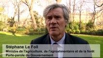Stéphane Le Foll présente le marché de Noël du ministère de l'agriculture